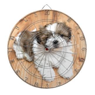 Junger Chi-Chu-Hund, der auf Parkettboden liegt Dartscheibe