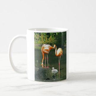 Junger Flamingo mit Eltern Kaffeetasse