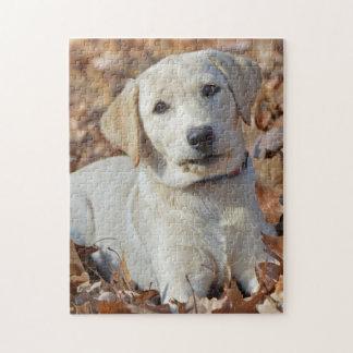 Junger gelber Labrador retriever-Welpe Puzzle