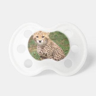 Junger Gepard CUB Schnuller