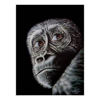 Junger Gorilla - Young Gorilla Poster
