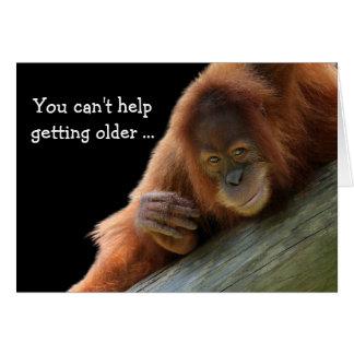 Junger Orang-Utan, der älteren Geburtstag erhält Karte
