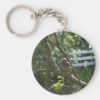 Junger Robin auf lila Niederlassung Schlüsselanhänger