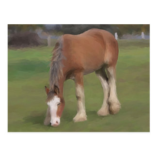 junges Clydesdale Postkarte