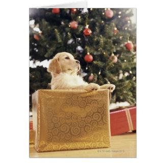 Junges Labrador, das auf einem Weihnachtsgeschenk Karte
