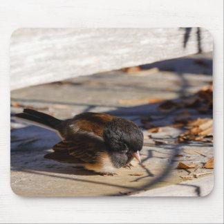 Junko Erholungen im Sun Mousepad