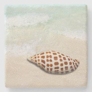 Junonia Seashell auf den Strand-Untersetzer Steinuntersetzer
