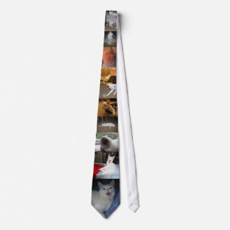 Jupey Krawatte