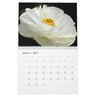 JustBetweenSisters Sammlungen Kalender