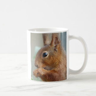 Kaffeebecher Eichhörnchen Foto: Jean-Louis Glineur Kaffeetasse