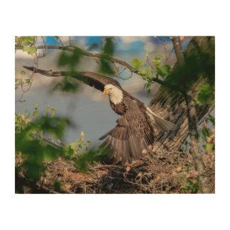 kahler Adler 14x11, der das Nest verlässt Holzwanddeko