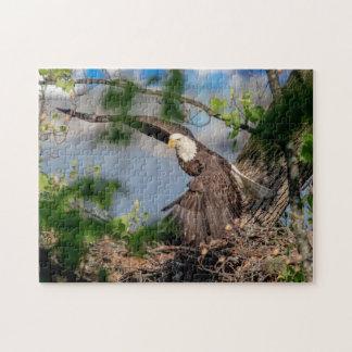 Kahler Adler, der das Nest verlässt Puzzle