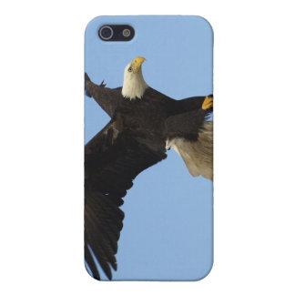 Kahler Adler iPhone Speck-Kasten iPhone 5 Cover