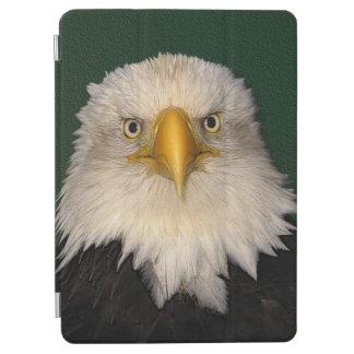 Kahler Adler-Tier-Foto-Porträt iPad Air Cover