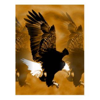 Kahler Amerikaner Eagle im Flug Postkarten