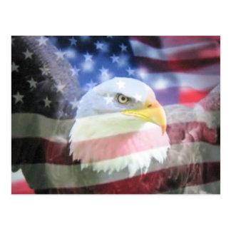 Kahler amerikanischer Adler u. USA-Flagge Postkarte