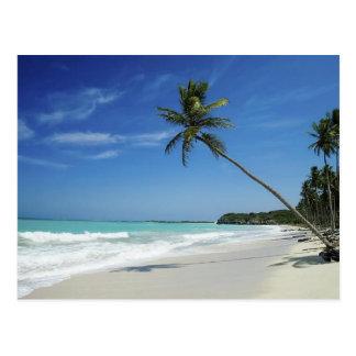 Kaiman-Insel-Strand Postkarte