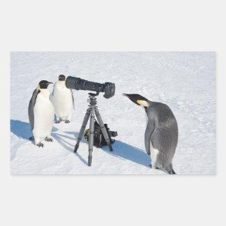 Kaiser-Pinguin-Fotograf - Aufkleber