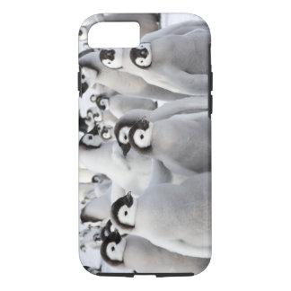 Kaiser-Pinguin-Küken iPhone 7 Fall iPhone 8/7 Hülle