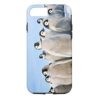 Kaiser-Pinguin-Küken iPhone 7 starker Fall iPhone 8/7 Hülle