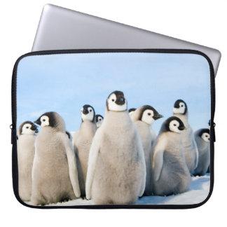 Kaiser-Pinguin-Küken - Laptopkasten Laptopschutzhülle