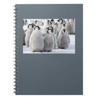 Kaiser-Pinguin-Kükennotizblock Notizblock
