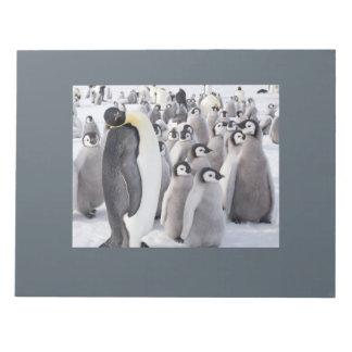 Kaiser-Pinguin- und Küken-Notizblock Notizblock