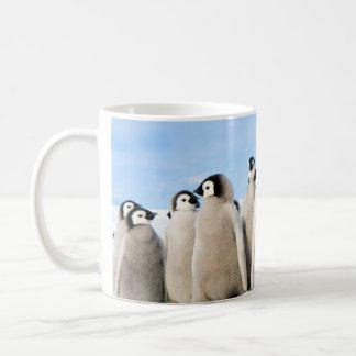 Kaiserpenguin-Küken-Tasse Kaffeetasse