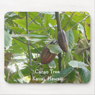Kakao-Baum, Kauai, Hawaii Mauspad