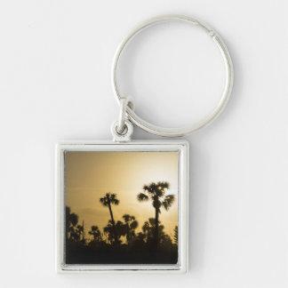 Kakao-Palmen-Silhouette Schlüsselanhänger