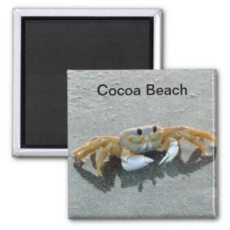 Kakao-Strand-Krabben-Foto-Magnet Florida Quadratischer Magnet