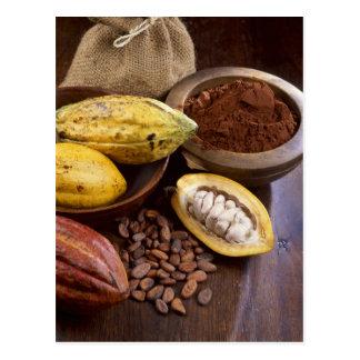 Kakaohülse, die Kakaobohnen enthält, die sind Postkarte