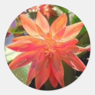 Kaktus-Blume Runder Aufkleber