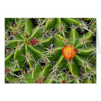Kaktus-Blumen-Karte - fertigen Sie Gruß besonders Karte