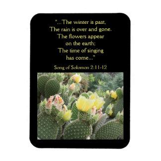Kaktus-Blumen-Lied von Solomon Magneten Magnet