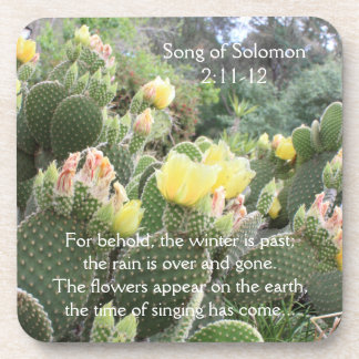 Kaktus-Blumen-Lied von Solomon Untersetzer