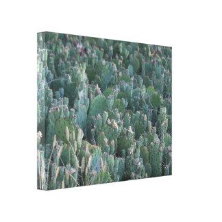 Kaktus-Flecken Leinwanddruck