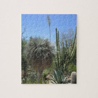 Kaktus-Garten Puzzle