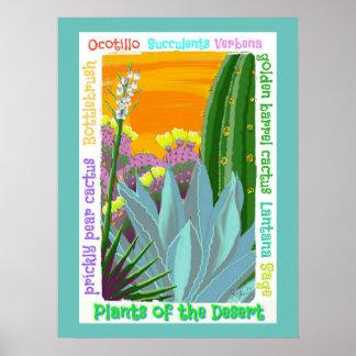 Kaktus-Gartenplakat Poster