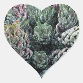 Kaktus-Herz-Aufkleber Herz-Aufkleber