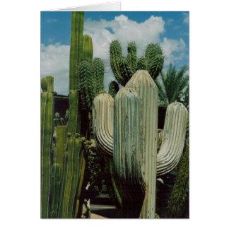 Kaktus-Karte Karte
