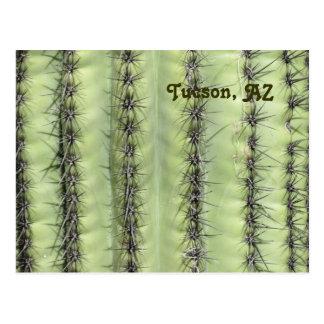 Kaktus-Nahaufnahme Postkarte