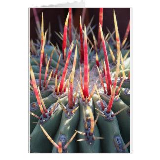 Kaktus notecard karte