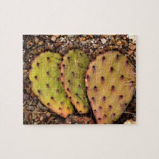 Kaktus-Porträt-Fotografie Puzzle