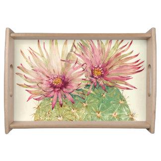 Kaktus-rosa Blüten Tablett