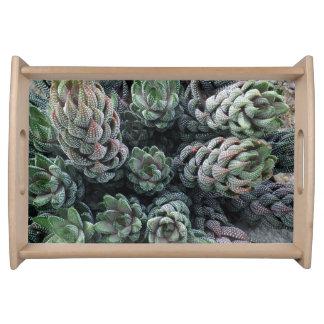 Kaktus-Serviertablett Tablett