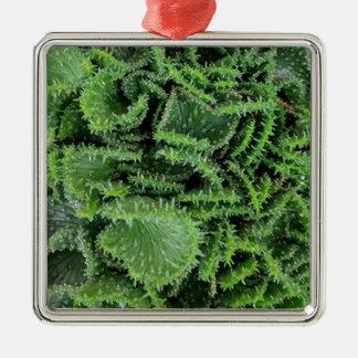 Kaktus Silbernes Ornament