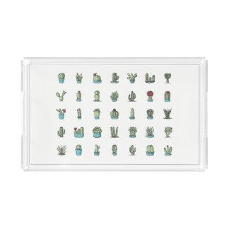 Kaktus-und Succulents-Illustrations-Acryl-Behälter Acryl Tablett