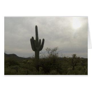 Kaktusbild Karte