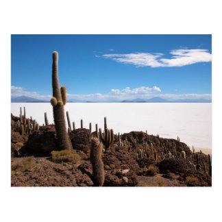 Kaktuspostkarte Salars de Uyuni Postkarte